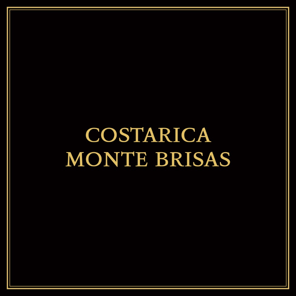 COSTARICA MONTE BRISAS SL-28 SEMI WASHED